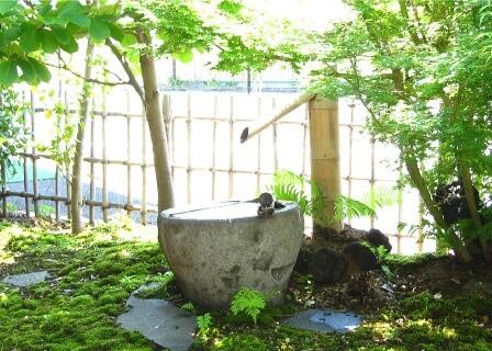 児島医院 長野県 整形外科 リハビリテーション科 院内風景 和風の建物・待合室 写真4