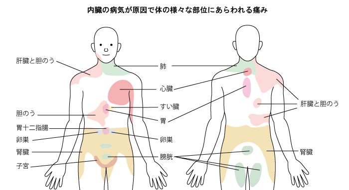 児島医院 長野市 リハビリテーション科 整形外科 インフルエンザ予防接種 肩こり 首の痛み 腰痛 ペインクリニック